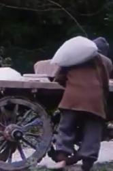 آواتار باغبان